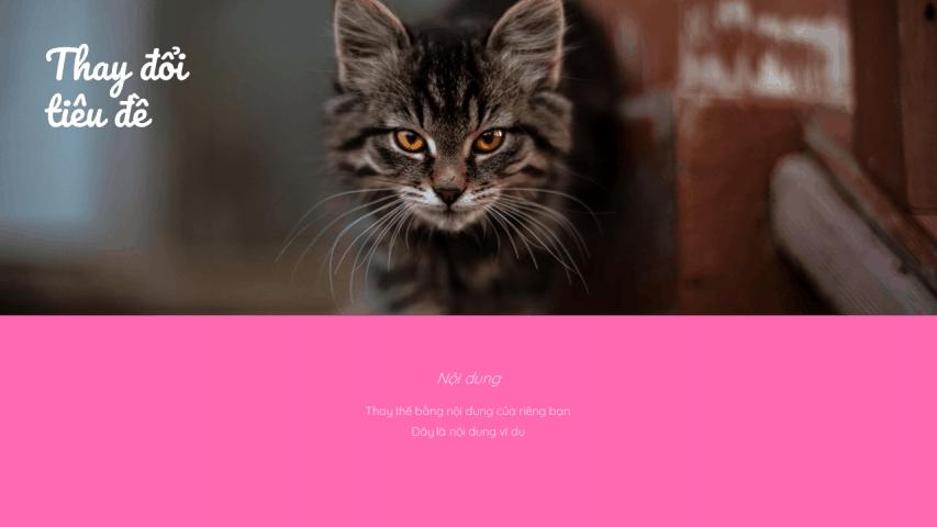 Mèo yêu