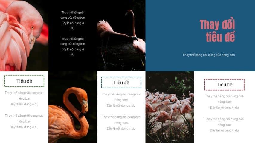 Vườn bách thú